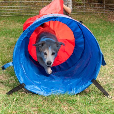 Agility Fun & Sport Sacktunnel
