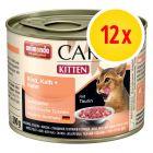 Animonda Carny Kitten blandpack 2 sorter 12 x 200 g