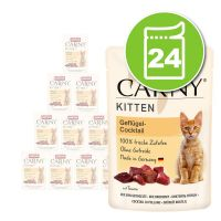 Animonda Carny Kitten 24 x 85 g pour chat