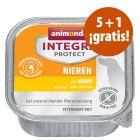 Animonda Integra Protect Renal tarrinas 6 x 150 g en oferta: 5 + 1 ¡gratis!