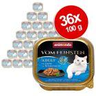 Animonda vom Feinsten Adult NoGrain in Sauce -säästöpakkaus 36 x 100 g