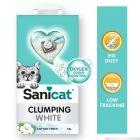 Areia aglomerante Sanicat Clumping algodão fresco para gatos