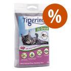 ARENA DEL MES: Tigerino XL Grain 12 kg ¡con descuento!