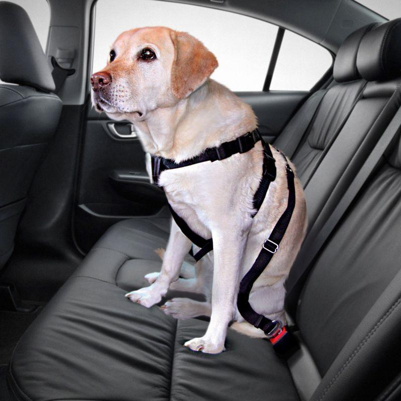Trixie Arn/és con cintur/ón de Seguridad 30-60 cm S