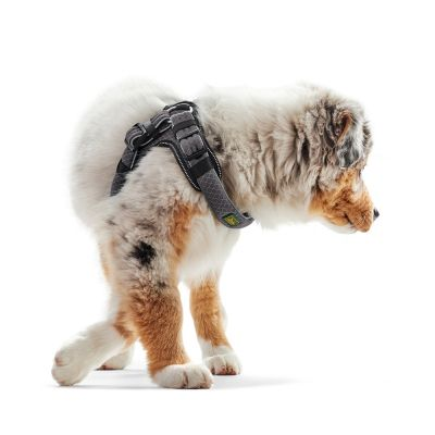 Arnés Hunter Manoa Vario Quick Light gris para perros