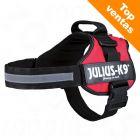 Arnés JULIUS-K9® Power rojo para perros