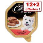 Barquettes Cesar pour chien 12 x 150 g + 2 barquettes offertes !