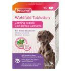 beaphar comprimidos anti-stress para cães e gatos