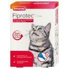 beaphar Fiprotec® Spot-on Katze