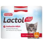 beaphar Lactol Lait maternisé pour chaton