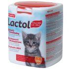 beaphar Lactol tejpótló tápszer macskáknak