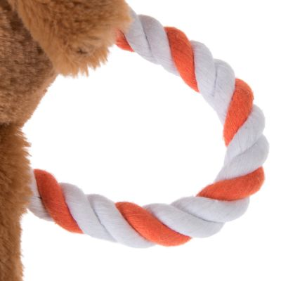 Bear with Rope Dog Toy