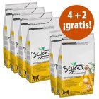 Beyond 6 x 1,4 kg pienso para gatos en oferta: 4 + 2 ¡gratis!