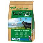 Black Angus Adult pour chien