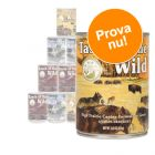 Blandat provpack: Taste of the Wild Canine 6 x 390 g