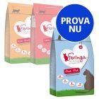Blandat provpack Feringa torrfoder för katter