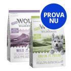 Blandat provpack: Little Wolf of Wilderness Junior (2 x 1 kg)