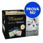 Blandat provpack: Miamor Ragout Royale 12 x 100 g