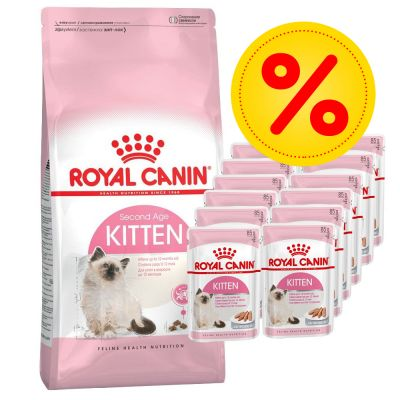 royal canin torrfoder