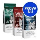 """Blandat provpack: Wolf of Wilderness Adult """"Taste of"""""""