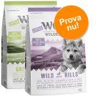 Blandat provpack: 2 x 1 kg Little Wolf of Wilderness Junior