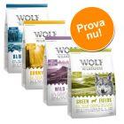 Blandat provpack: 4 x 1 kg Wolf of Wilderness Adult