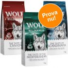 Blandat provpack: 3 x 1 kg Wolf of Wilderness Adult Regions