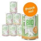 Blandat provpack: zooplus Bio kattfoder 6 x 400 g