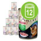 Blandet pakke Animonda Carny Adult 12 x 400 g