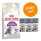 Blandet pakke: 400 g tørfoder + 12 x 85 g Royal Canin vådfoder!