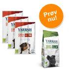 Blandet pakke: prøv 2 forskellige Yarrah Øko hundesnacks