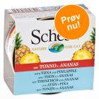 Blandet pakke: Schesir Fruit 6 x 75 g