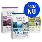 Blandet pakke: Wolf of Wilderness Adult