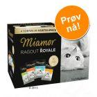 Blandet Prøvepakke Miamor Ragout Royale 12 x 100 g
