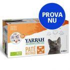 Blandpack: Yarrah Organic Paté 8 x 100 g