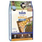 bosch Adult, poisson & pommes de terre