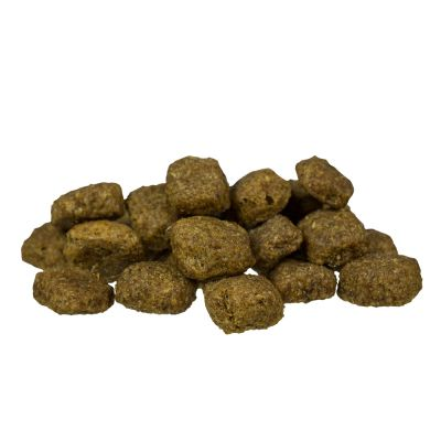 bosch Adult Poultry & Millet Dry Dog Food
