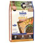 bosch Adult saumon, pommes de terre pour chien