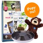 bosch Hvalpepakke: Hvalpefoder + legetøj, snacks & hvalpeskål!