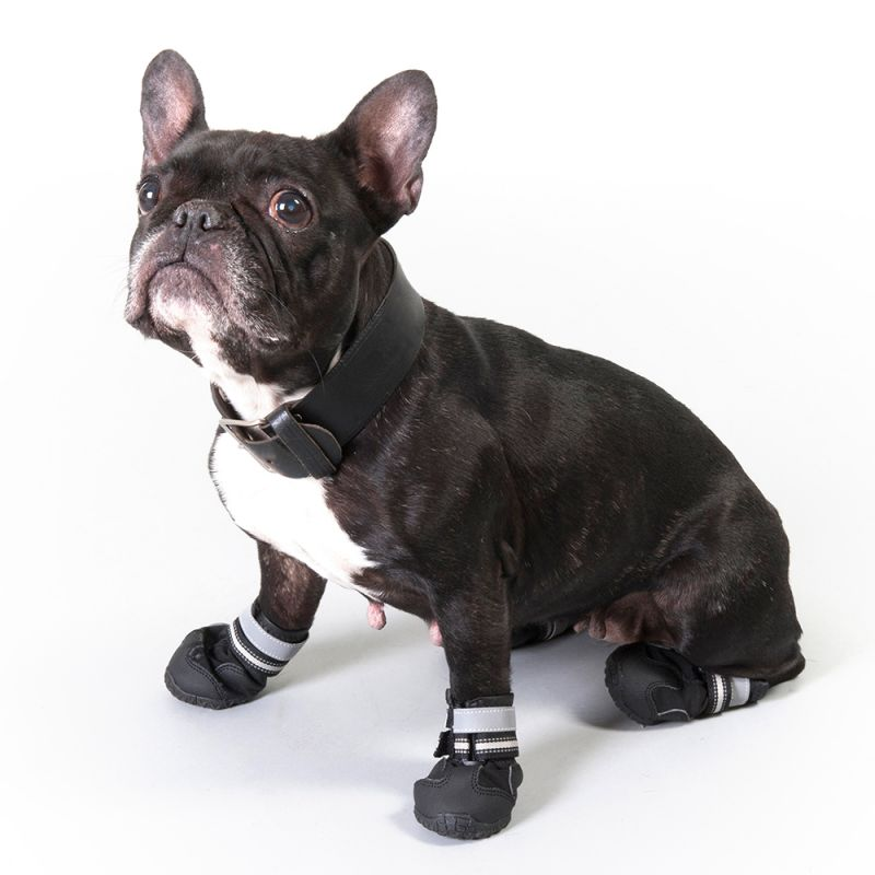 Trixie Botas de protecci/ón para cuidad para perro