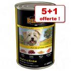 Boîtes Belcando pour chien 5 x 400 g + 1 boîte offerte !