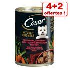 Boîtes Cesar Natural Goodness pour chien 4 x 400 g + 2 boîtes offertes !