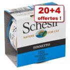 Boîtes Schesir en gelée pour chat 20 x 85 g + 4 boîtes offertes !