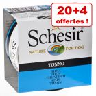 Boîtes Schesir  pour chien 20 x 150 g + 4 x 150 g offerts !