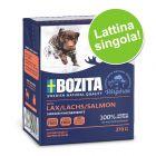 Bozita Bocconcini in gelatina 1 x 370 g