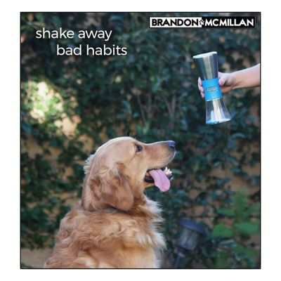 Brandon McMillan Shake & Break