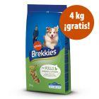 Brekkies 14 / 15 kg pienso para perros en oferta: 4 kg ¡gratis!