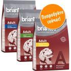 Смешанная пробная упаковка Briantos Adult сухой корм
