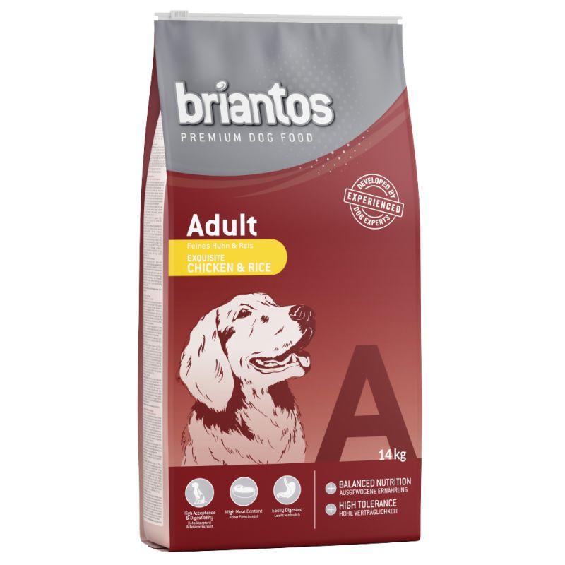 Briantos Adult Kyckling & ris