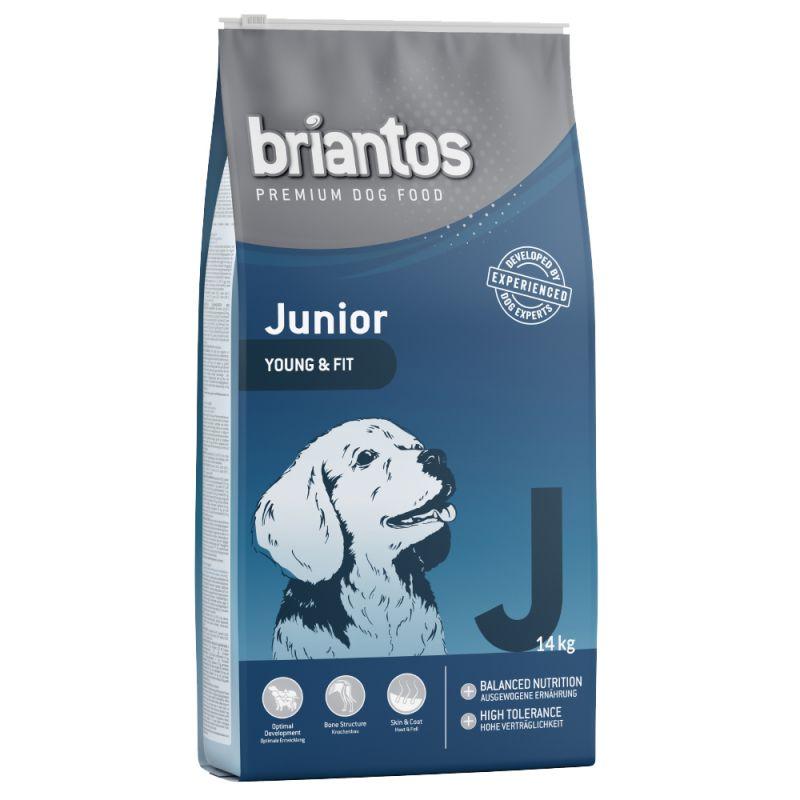 Briantos Junior Chicken & Rice